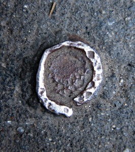 SRitterNYC_worn-new-york_IMG_8607
